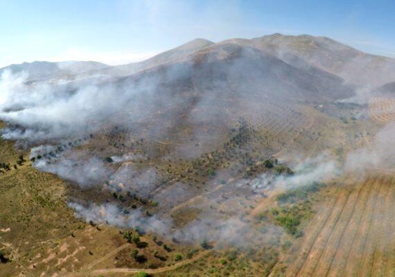 Comienza temporada de incendios forestales en BC