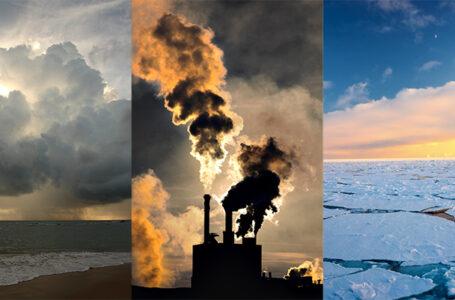 2020: Año más cálido registrado