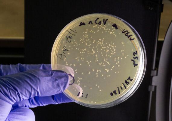 Científicos desarrollan un filtro de aire que elimina casi el 100 % del coronavirus
