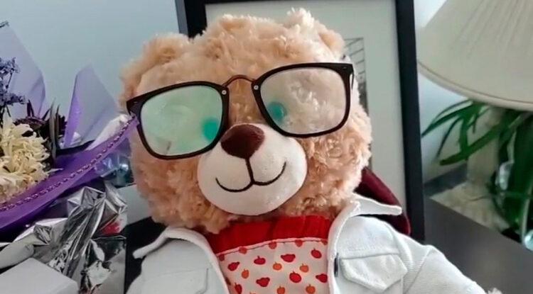 Ryan Reynolds ofrece 5.000 dólares de recompensa por un oso de peluche robado por esta conmovedora razón