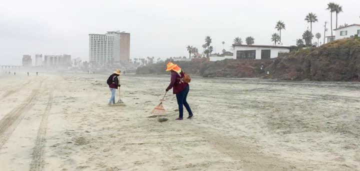 Desde hoy, playas en Rosarito abrirán por la tarde