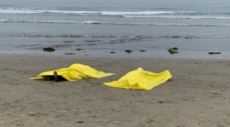 Mueren dos ahogados en San Diego; intentaban cruzar ilegalmente