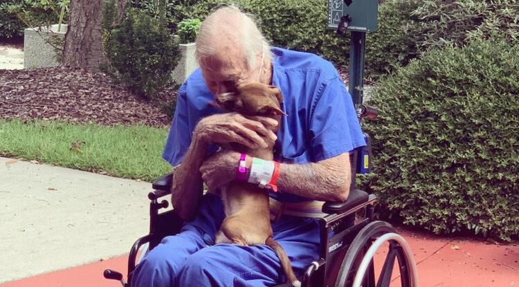 Un anciano de 86 años sufre un derrame cerebral y se salva gracias a su fiel chihuahua