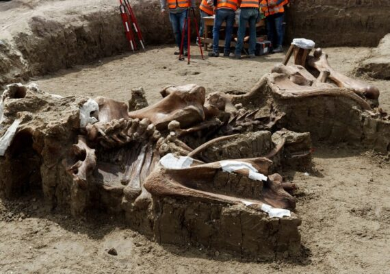 Construyen aeropuerto de Santa Lucía en importante zona de hallazgos arqueológicos: INAH