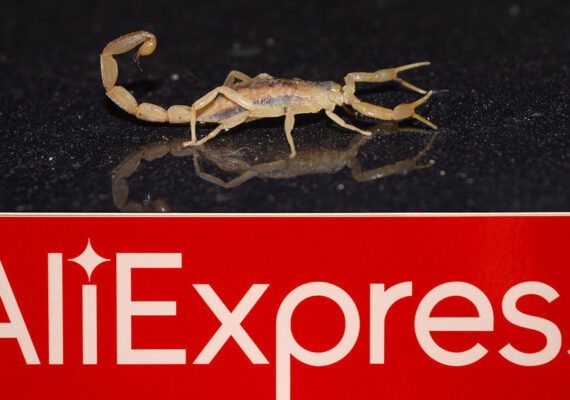 Compra un bolso por Internet y al abrirlo le pica un peligroso escorpión