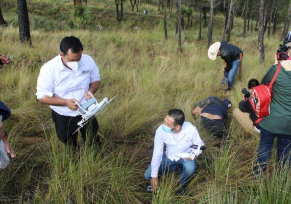 Utilizan drones para reforestar en Veracruz