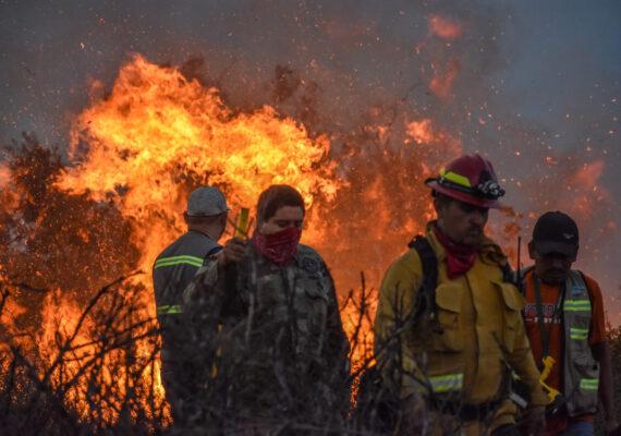 Realizan «Cerveza Baja 2020» para ayudar a los bomberos de Playas de Rosarito