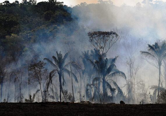 La Amazonía registra en nueve meses el mayor número de focos de incendios desde 2010