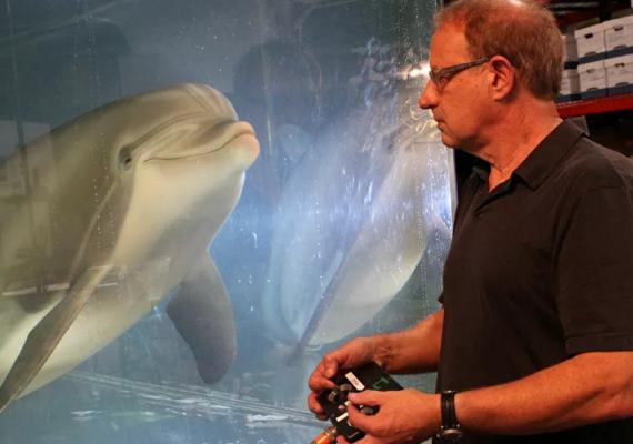 Un delfín robótico podría revolucionar los espectáculos con animales
