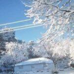 Caen las primeras nevadas en Chihuahua